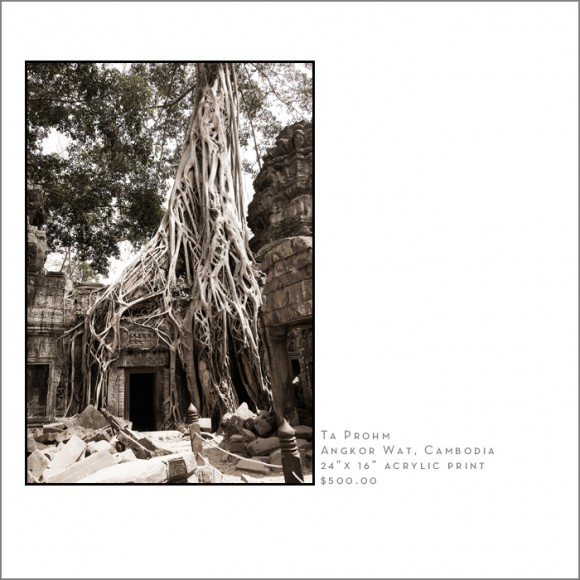 ta prohm Ankor Wat U.S. Travel Photographer