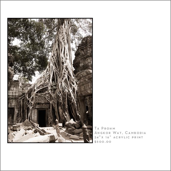 ta prohm Ankor Wat U.S. Travel Photographer