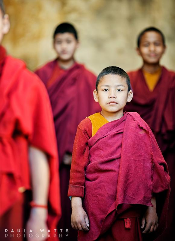 young boy Tibet buddhist monk Dharamsala India